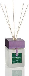 Absolute Green Tea Fragrance diffuser bamboo sticks 250ml Locherber Home