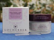 Locherber DNA 24-uurs crème 50 ml
